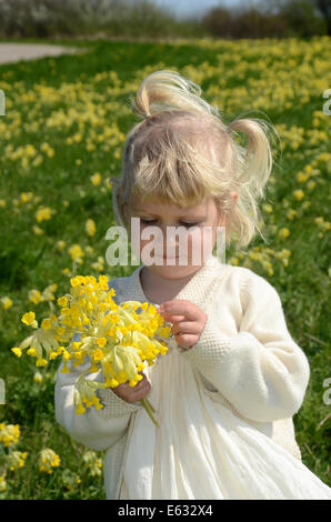 Little girl, 2 years, wearing a summer dress, with a bouquet of cowslip, Sweden - Stock Photo