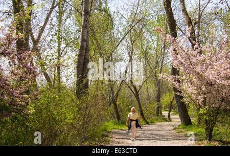 People walking the tree lined Boise Greenbelt pathway along the Boise river, Boise, Idaho, USA - Stock Photo