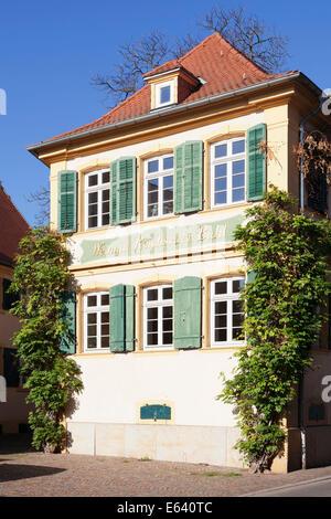 Weingut Reichsrat von Buhl vineyard estate, German Wine Route, Deidesheim, Rhineland-Palatinate, Germany - Stock Photo