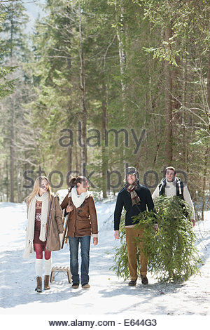 Smiling couples with fresh cut Christmas tree and sled in snowy woods - Stock Photo