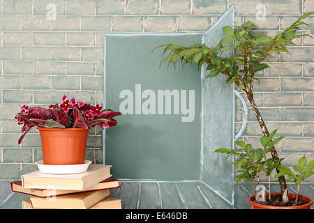 Flowers and tree before illustration on a chalkboard of the open door in class - Stock Photo