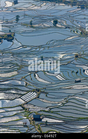 Reflections of water filled rice terraces, Yuanyang County, Honghe, Yunnan Province, China - Stock Photo