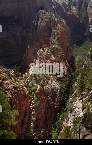Walter's Wiggles zigzag, leading along the knife-edge to Angel's Landing, on West Rim Trail and Angels Landing track, - Stock Photo