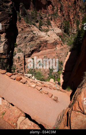 Walter's Wiggles zigzag, on West Rim Trail and  Angels Landing track, Zion National Park, Utah, USA - Stock Photo