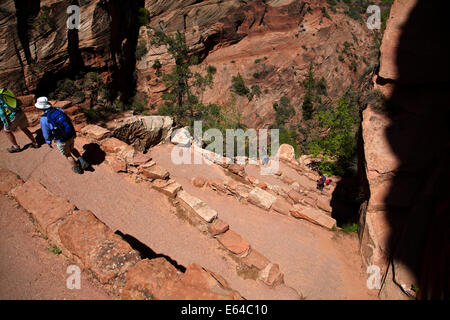 Hikers on Walter's Wiggles zigzag, on West Rim Trail and  Angels Landing track, Zion National Park, Utah, USA - Stock Photo