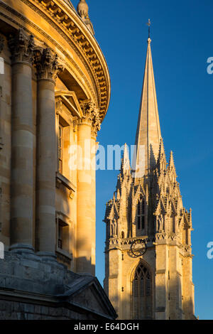 Evening sunlight on Radcliffe Camera and the tower of St Mary's Church, Oxford, Oxfordshire, England - Stock Photo