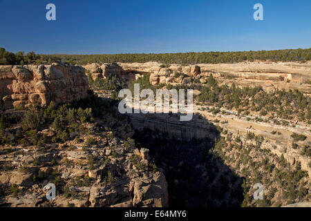 Cliff Canyon and Cliff Palace (over 700 years old) in distance, Mesa Verde National Park (UNESCO World Heritage - Stock Photo