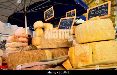 Various types of cheeses at a market stall, L'Île-Rousse, Balagne, Corsica, France - Stock Photo