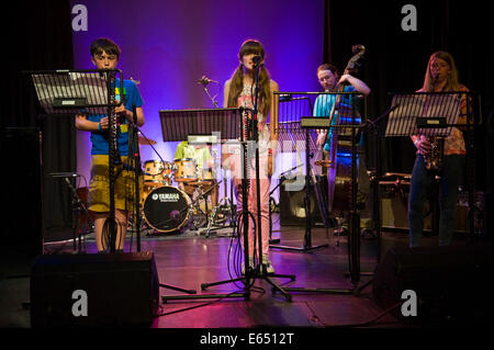 Live music Junior Jazz Summer School band on stage at Brecon Jazz Festival 2014 - Stock Photo