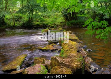 UK,Derbyshire,Peak District,River Derwent and Stepping Stones near Hathersage - Stock Photo