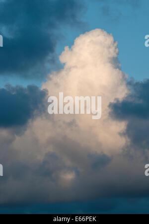 A large cumulus cloud rising upwards - Stock Photo