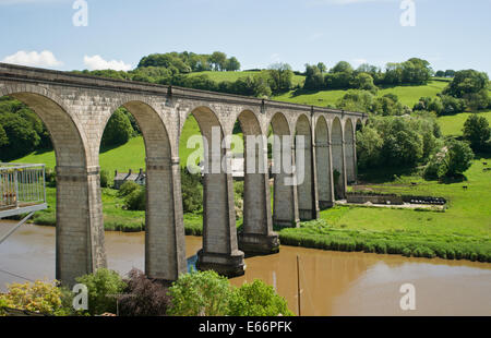 The Viaduct at Calstock, Cornwall - Stock Photo