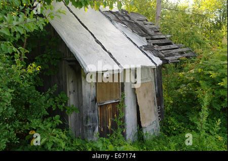 old ruined hut in a scrub - Stock Photo