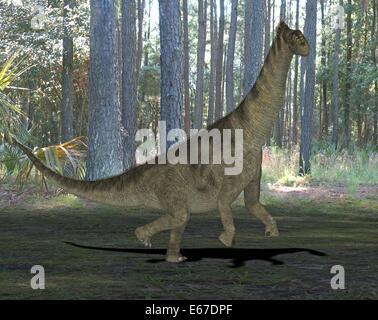 Dinosaurier Camarasaurus / dinosaur Camarasaurus - Stock Photo
