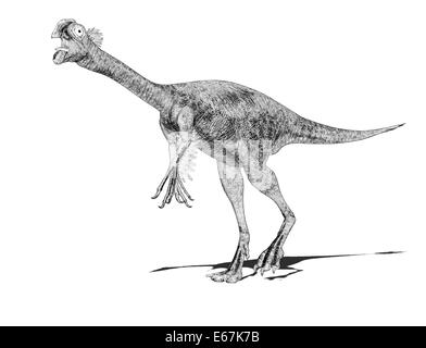 Dinosaurier Gigantoraptor / dinosaur Gigantoraptor - Stock Photo