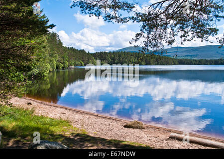 Forest, hills and sky reflected in Loch Garten, RSPB Abernethy Forest National Nature Reserve, Cairngorms, Speyside, - Stock Photo