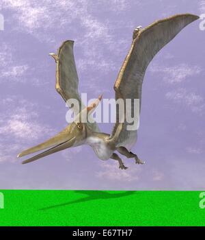 Dinosaurier Pteranodon / dinosaur Pteranodon - Stock Photo