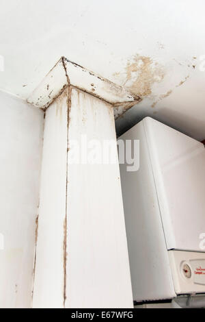... Wall damaged by water leak in a council estate apartment in London,  England - Stock