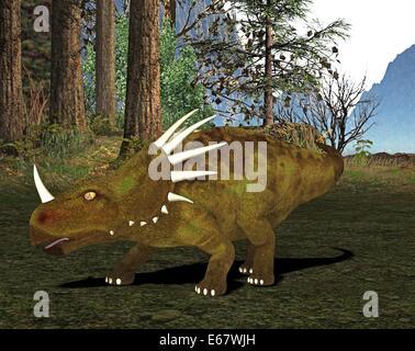 Dinosaurier Styracosaurus  / dinosaur Styracosaurus - Stock Photo