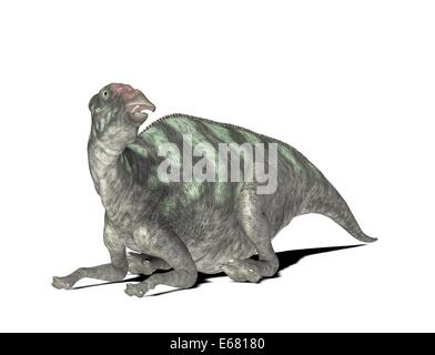 dinosaur Maiasaura - Stock Photo
