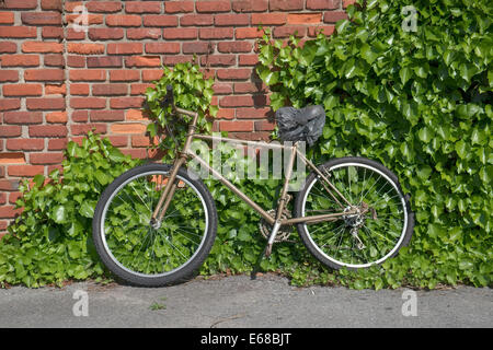 old bike leaning against brick wall with vines growing up it. - Stock Photo