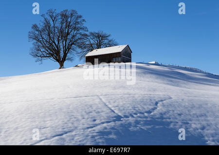 An Appenzell farmhouse on a snow-covered hill in winter, Urnäsch, Canton of Appenzell Ausserrhoden, Switzerland - Stock Photo