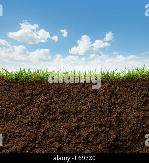 cross section of grass and soil against blue sky - Stock Photo
