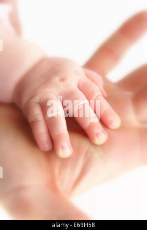 baby,mother,holding,hands - Stock Photo
