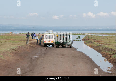 Flooded track on south side of Lake Nakuru with clients disembarking to see flamingos and pelicans Kenya Africa - Stock Photo