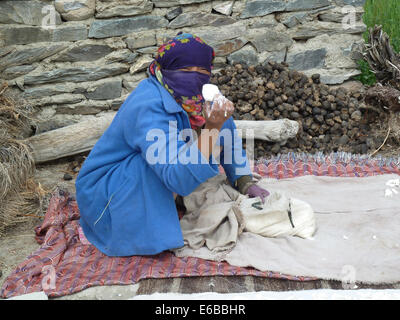 Woman at Char Village, Zanskar valley, Ladakh, Jammu & Kashmir, India, Himalayas, near Phuktal Gompa, making cheese - Stock Photo