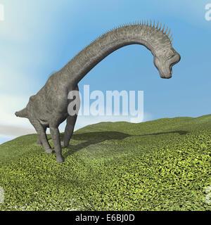 Brachiosaurus dinosaur walking on the grass. - Stock Photo