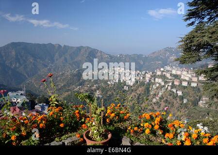 A morning view over part of Shimla suburbs on the Himalayan foothills in  Himachal Pradesh, India. - Stock Photo