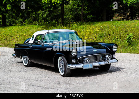 1956 Ford Thunderbird Convertible Roadster on pavement - Stock Photo