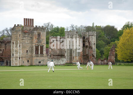 A cricket game being played at Cowdray Park in Sussex England UK, with a backdrop of Cowdray House, a ruined Tudor - Stock Photo