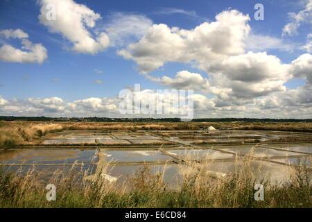 Salt pans near La Baule, Brittany, France - Stock Photo