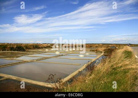 Salt pans near La Baule, (Loire Atlantique) Brittany, France - Stock Photo