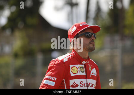 Francorchamps, Belgium. 21st Aug, 2014. FERNANDO ALONSO of Spain and Scuderia Ferrari is seen on the race track - Stock Photo