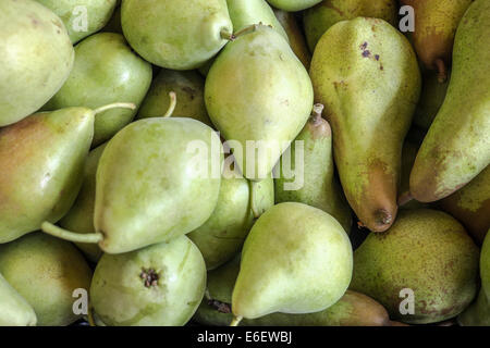 Pears of Spanish farms during Russian boycott food to UE - Stock Photo