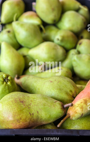 Pears of Spanish farms during Russian boicott food to UE - Stock Photo