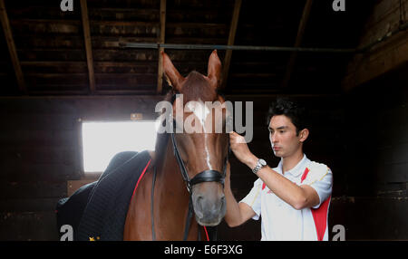 London, UK. 21st Aug, 2014. Alex Hua Tian prepares for practice in Pinfold Stables near Manchester, Great Britain - Stock Photo