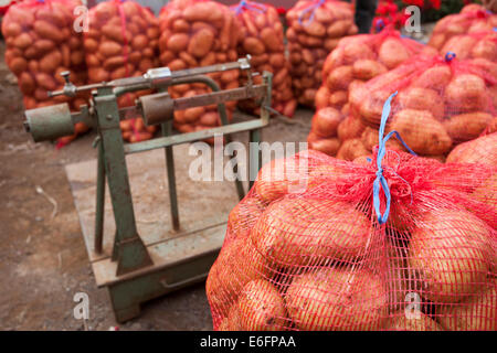 Potatoes in leno weave sacks ready for sale to a wholesaler's agent stand near a weighing scale. - Stock Photo