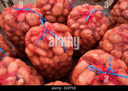 Potatoes in leno sacks ready for sale to a wholesaler's agent. - Stock Photo
