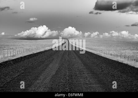 Road in Zumwalt Prarie Preserve with storm clouds, Oregon - Stock Photo