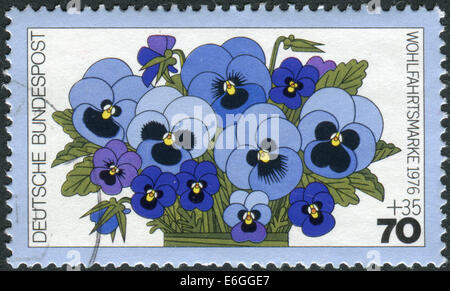 GERMANY - CIRCA 1976: Postage stamp printed in Germany, shows a flowering Viola tricolor, circa 1976 - Stock Photo