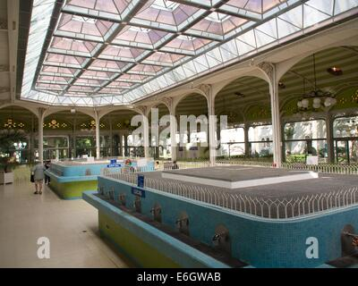 Fountain of celestine spring in thermal spa and resort of Vichy, Auvergne, France, Europe - Stock Photo
