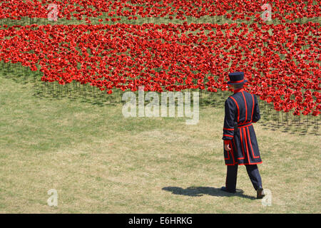 Yeoman Warder & field of Ceramic Poppies 'Blood swept lands & seas of red' World War 1 tribute in the dry moat at - Stock Photo