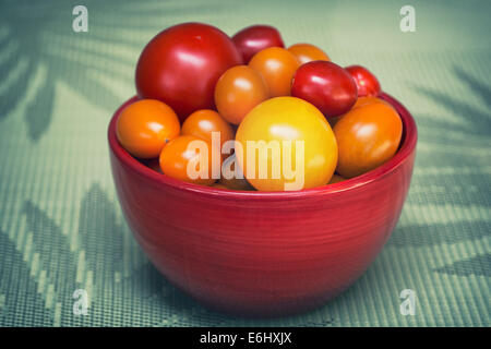 Bowl of Mixed Tomatoes - Stock Photo