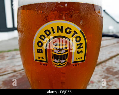 Glasses of Boddingtons Bitter from Manchester in a pint glass - Stock Photo
