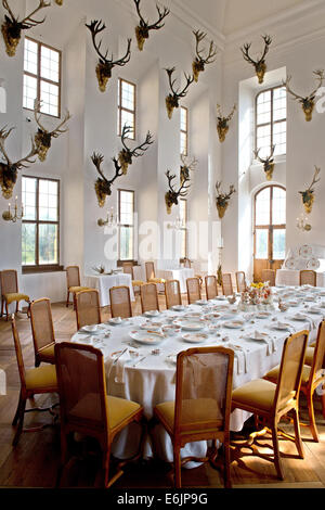 Moritzburg, Germany. 19th Aug, 2014. A view of the richly decorated ballroom in Moritzburg palace in Moritzburg, - Stock Photo