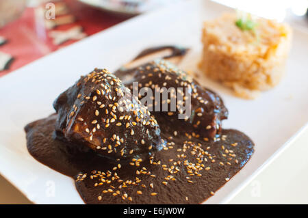 Chicken with mole - Stock Photo